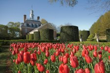 Viva Virginia: 6 Places You'll Love